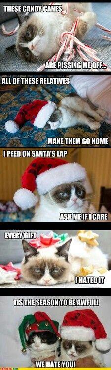 Omg....I literally laughed til I cried...bc it's TRUE!!!!! AHAHAHAHAHAHA!!!!!! :'D