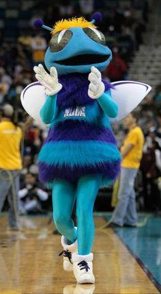 Hugo the Hornet : Hugo the Hornet Football And Basketball, College Football, Soccer, Carolina Pride, Charlotte Hornets, Latest Sports News, Mascot Costumes, Major League, Nfl