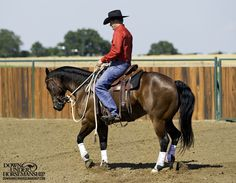 Riding Exercise #Two-Tracking Stage 2  Goal: To be able to move the horse's whole body off your leg so that he moves across the arena at a 45-degree angle, staying completely straight from his nose to his tail while remaining soft in the bridle. You should be able to do this at a walk, trot and canter.  Learn more https://www.downunderhorsemanship.com/Store/Product/MEDIA/D/254/