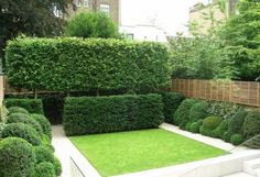 kleiner Garten gestalten Ideen Heckenpflanzen Formen