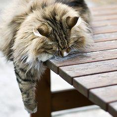 I'm so tired!
