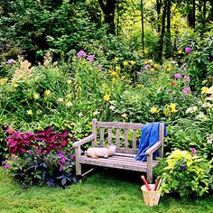 This garden plan combines easy, adaptable plants to add color to spots that don't see full sun.
