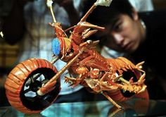 lobster shell motorcycle