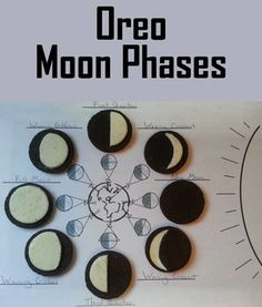 Have students learn and have fun with this Phases of the Moon Activity using Oreo Cookies!  This Activity is ink friendly and and contains the following:   1. Moon Phase identification: Followed by Oreo shaping & placement 2. Oreo's around the Earth: 2 different Sun, Earth, Moon Formats:           A. One showing a persons perspective from Earth with viewing angle          B. One without the viewing angle 3. Two pages of Answers