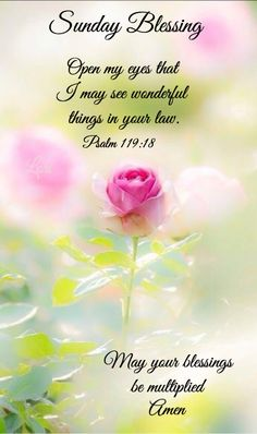 753 best daily greetings images on pinterest in 2018 good morning 9376 sunday blessings j morning prayer quotesmorning greetings m4hsunfo