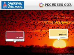 SW 6866 - Heartthrob / SW 6695 - Midday