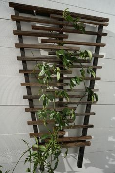 A wood trellis is very useful to fill up wall space. You can use it for growing vegetation or use the wood trellis just as a piece of art. Hops Trellis, Garden Trellis, Garden Privacy, Garden Gates, Outdoor Pergola, Pergola Kits, Backyard Pergola, Backyard Ideas, Patio
