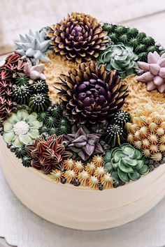 These Succulent Cakes Look So Real, You Won't Believe They're Icing