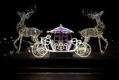 fot. Jan Bolek #lights #reindeers