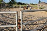 Here's how to design your dream equestrian setup--in this case, on a small acreage.
