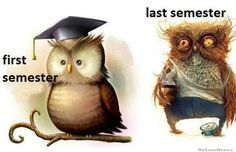That is exactly how college was