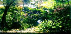 2015 AGA Aquascaping Contest - Entry #204