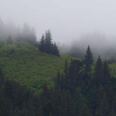 Misty Mountain  #SkagwayAlaska #Photo #Photograph