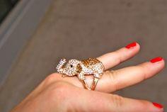 Ring, elephant, jewelry