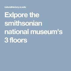Explore the Smithsonian National Museum's 3 floors