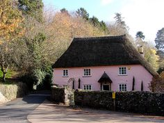 PINK thatched cottage, England