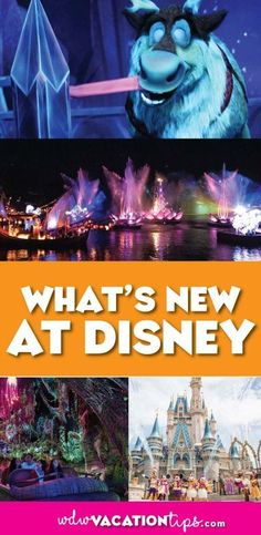 Covering everything that is opening at Disney World in 2018. Disney is constantly adding new things at the resort to do every year. It can be hard to keep up on the latest openings and what to expect on your next trip to the Walt Disney World Resort. #new