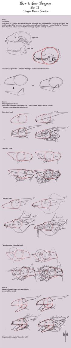 How to Draw Dragons II by Sheranuva on deviantART