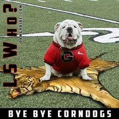 It's Great to be a Georgia Bulldog