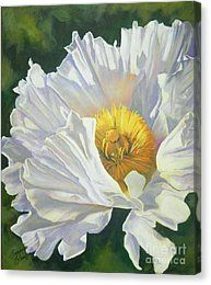 White Poppy Canvas Prints and White Poppy Canvas Art (Page #2 of ...