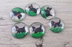 Hey, I found this really awesome Etsy listing at https://www.etsy.com/listing/279566040/6-vintage-glass-cabochons-scottie-dog