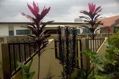 Beautiful Accra
