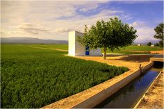 #delta #ebre #ebro Ebro, Land Scape, Natural, Golf Courses, Sidewalk, Sheds, Agriculture, Photos, Side Walkway