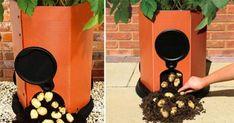 small-potato-planter-01.jpg