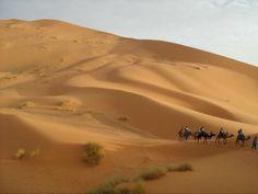 Sahara desert - Morocco