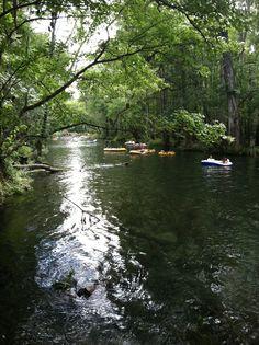 Santa Fe River, north of Gainesville, Alachua County, Florida.  Canoeing, tubing, swimming, fun.  www.GainesvilleFloridaHomes.com