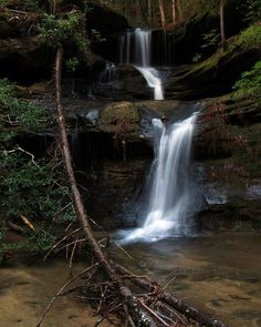 """Sam Calhoun on Instagram: """"Waterfall Wednesday!  Another beauty found in Bankhead National Forest, AL.  #waterfalls #visitnorthal #explore #getoutstayout  #optoutside…"""""""