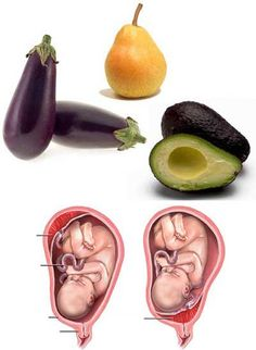 Avocados, Eggplant and Pears target the health and function of the womb and cervix in females. They also resemble these organs! Today's research shows that when a woman eats one avocado a week, it balances hormones and helps to prevent cervical cancers. And did you know...It takes exactly 9 months to grow an avocado from blossom to ripened fruit! How profound is that!?