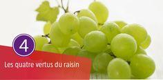 Le raisin est aliment souvent banni dans la plupart des régimes amincissants et pourtant, il a toute sa place puisqu'il apporte de nombreux atouts Beauté, Santé, mais aussi Drainant et Détox.