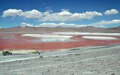 Laguna Colorada (Sud Lipez) Bolivie : paysage