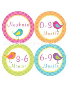 Items similar to Baby Storage Labels Baby Clothes Organization Stickers Plus Extras - Set of 12 Birdie Baby Girl Nursery Storage Bin Labels - Bonny on Etsy Baby Storage, Baby Month Stickers, Clothing Labels, Baby Bedroom, Baby Month By Month, Girl Outfits, Toddler Stuff, Handmade Gifts, Babys