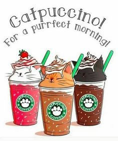 Just Pinned to CatMeows: Can Starbucks be any perfect than this? Imagine how awesome this drink is http://ift.tt/2Fpcw5i