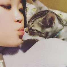 CHUCHUCHU♡ #甘えん坊 #甘えん坊キッド #甘やかし #ねこのいる生活 #猫 #ねこ #ネコ #ねこ写真 #catstagram #ilovecat #ilovecats #cat #cats #neko #愛猫 #にゃんすたぐらむ #キッド#nekoclub #NEKOくらぶ #Instagramjapan#Instagram #Instagramers #like4like #instagood#followme#yukistagram