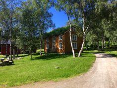 Fauske bygdetun Norway, Sidewalk, Bucket, Explore, Plants, Side Walkway, Walkway, Plant, Buckets