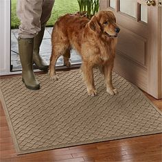 Just found this Water Trapper Floor Mat - Basketweave Water Trapper%26%23174%3b Mat -- Orvis on Orvis.com!  These are the best for dirty paws tracking in mud and dirt.