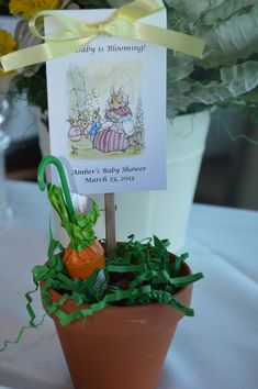 Peter Rabbit Baby Shower Favors