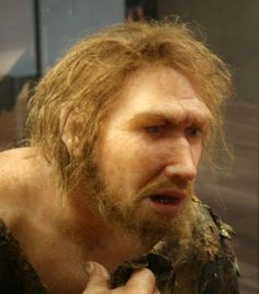 The myth: Neanderthals couldn't speak; they grunted    It has been long believed that Neanderthals couldn't speak like humans – having only a basic capacity for sound in their throats, but in 1983, scientists found a Neanderthal hyoid bone at a cave in Israel which was identical to that of modern humans. This means that their capacity for speech is the same as our own. There is no reason to believe that they did not have at least a basic system of vocal communication.