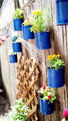 Watering Backyard Tin Can Fence Garden