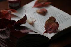 feuille d'automne sur un livre. Très automnale!