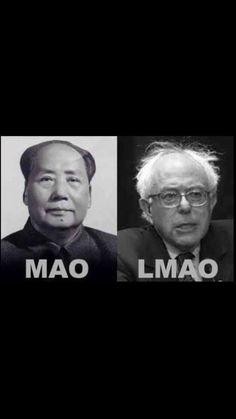 Bernie Sanders is a socialist Turd