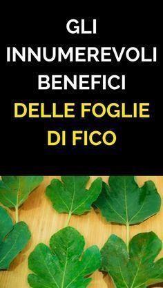 Tutti i benefici delle foglie di FICO