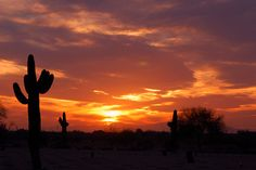 Sunset, National Memorial Cemetery of Arizona  I soo miss Arizona. It will always have a place in my heart.