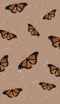 live wallpaper livewallpaper Tumblr vsco aesthetic butterfly borboleta