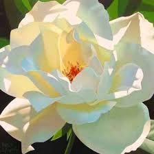 Image result for fondos para un cuadro de flores