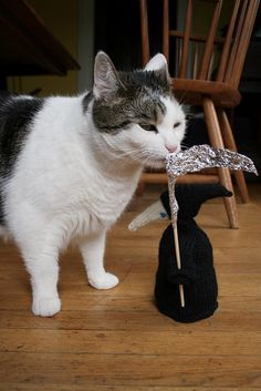 cat with knit grim reaper