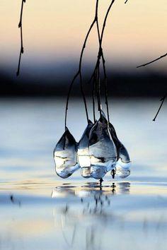 Natuurlijke glaskunst